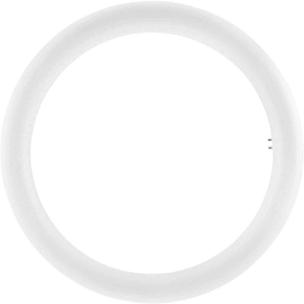 Osram SubstiTUBE T9 Circular EM MAINS G10Q 20W 840 | kold hvid - erstatter 32W